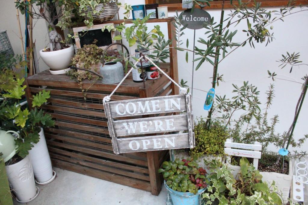 店先には植物がたくさん。オリーブやキャットテイルなど、すくすく元気に育っています。<br />季節に合わせてお店の外観や内装も変えているので、ぜひご注目ください。